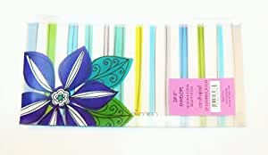 "Carolina Pad Studio C Zip-it Plastic Reusable Envelope ~ 10.25"" x 5.25"" (Blues and Greens, Blue-Violet Flower)"