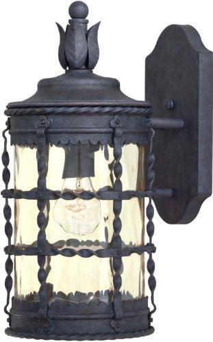 Minka Lavery 8880-A39 1 Light Outdoor Wall Mount, Spanish Iron