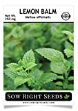 Sow Right Seeds - Lemon Balm Seeds Non-GMO Heirloom Seeds with Full Instructions for Planting an Easy to Grow herb Garden, Indoor or Outdoor; Great Gardening Gift