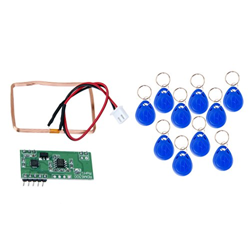 Baoblaze 125KHz EM4100 RFID Card Key ID Reader Module + ID Card keyfobs for Arduino