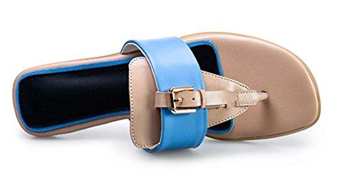 deslizadores de las sandalias de las mujeres de piel de mujer sandalias de tacón bajo y zapatillas de cabeza cuadrada Blue