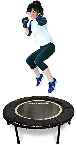 Leaps & ReBounds Bungee Rebounder - in-Home Mini Trampoline - Safety Bungee Cover, 32 Latex Rubber Bungees - Named Best Value Rebounder (Gray, 48)