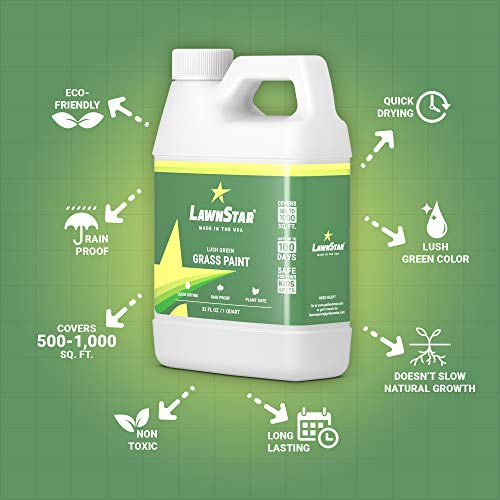 LawnStar Grass Paint, 32 fl  oz  - Makes Grass Green Again - The Non-Toxic  Solution for Water Restrictions & Drought - Skyrocket Your Curb Appeal