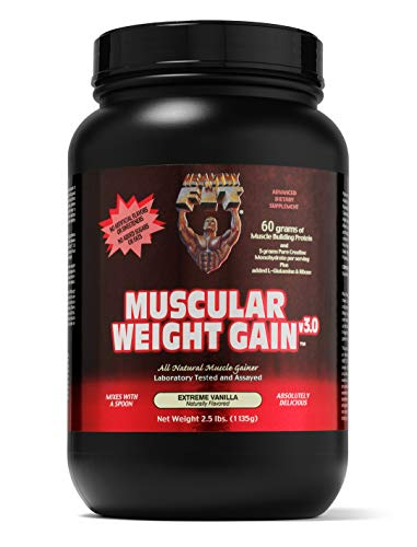 Healthy 'N Fit Muscular Weight Gain v3.0- Natural Vanilla (2.5lb): Highest Protein Gainer- Only protein builds muscle. From America's #1 Brand in Supplements Technology and Purity. …