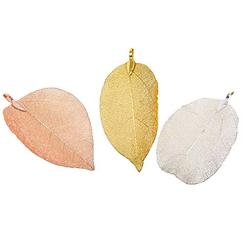 Monrocco 6Pcs Mixed Color Natural Leaf Pendant,Filigree Leaf Charm Natural Real Leaf for Jewelry ()