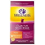 Wellness Complete Health Natural Dry Small Breed