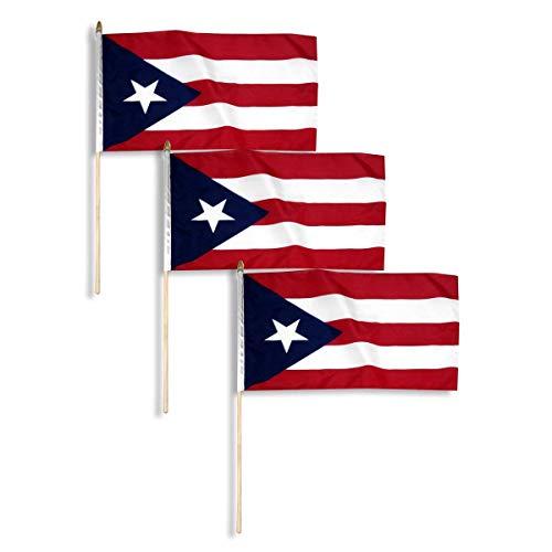 Puerto Rico Flag 12 x 18 inch (3 PK)