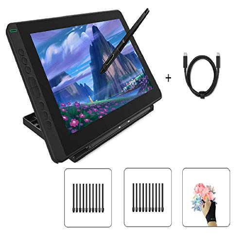 Huion Kamvas 13 Pen Display Drawing Tablet with Screen, Black, Stand Included & Full-Featured Type-C Cable USB-C to USB-C Cable