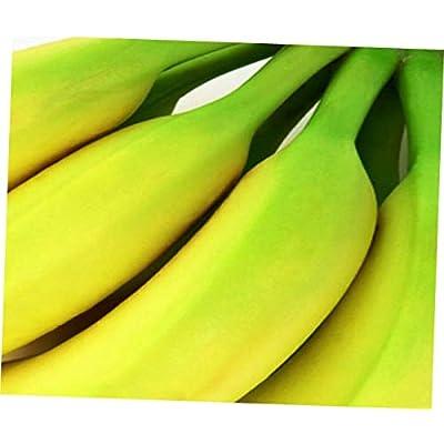 """ELLA Plant Musa acuminata""""Gran Nain"""" Banana Plant Fruit Tree Grand Nains Naine Common - EB154 : Garden & Outdoor"""