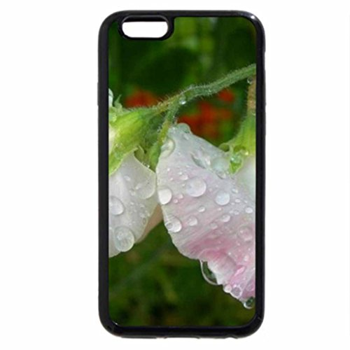 iPhone 6S / iPhone 6 Case (Black) After Rain