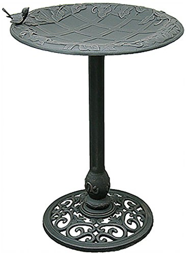 Innova Hearth and Home 29618CN English Ivy Birdbath, Cool green