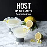 HOST Freeze Insulated Martini Cooling Cups Freezer