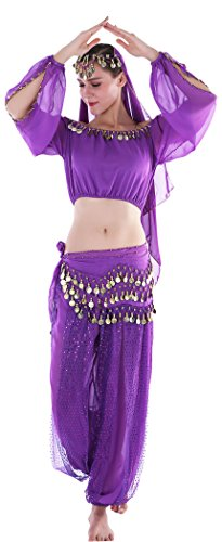 Belly Dancer Halloween Costume Adult Jasmine Costume Adult Purple ()