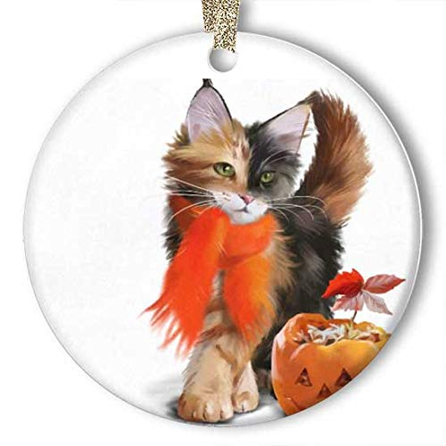 Pumpkin Ideas For Halloween Cat (128 buyloii Cat and Pumpkin Halloween Ornament (Round) Personalized Ceramic Holiday Christmas Ornament Ideas)