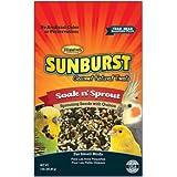 Higgins Sunburst Soak n' Sprout Gourmet Treats for Small Birds, 3 oz.