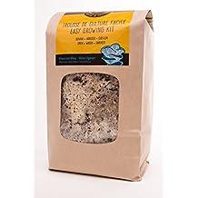 Blue Oyster - Pleurotus Ostraetus Columbinus - Home Growing Kit (1, 1Kg)