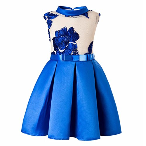 ZaH Baby Girl Dress Party Wedding Flower Dresses Christmas Gowns(Blue,8-9Y) -