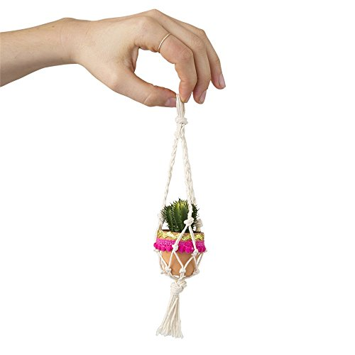 (Natural Life Cream Mini Macramé Faux Succulent)