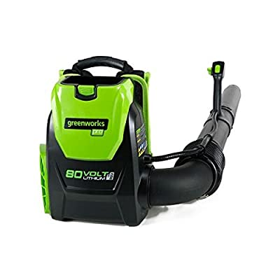 80V Cordless Backpack Blower it 145 MPH by GreenWorks