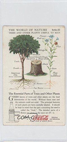 The Essential Parts of Trees and Other Plants Ungraded COMC Good to VG-EX (Trading Card) 1930s Coca-Cola The World of Nature - Series III: Trees And Other Plants Useful To Man #1 (Parts Essential)