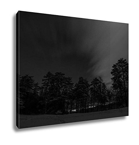 Ashley Canvas Night Landscape, Kitchen Bedroom Living Room Art, Black/White 24x30, AG6549448