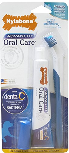 Nylabone Advanced Oral Care Puppy Dog Dental Kit