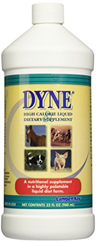 Dyne Liquid Diet 32 oz _DX