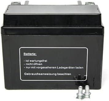Batterie wartungsfrei 12V 5AH YB4L-B YTX4L-BS YT4L-B f/ür Malaguti F15 50 DD LC Firefox 1998-2000