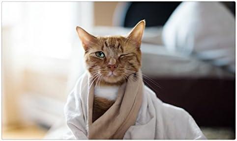 Gatos toalla de _ _ 471775 postal Post tarjeta: Amazon.es: Oficina y papelería