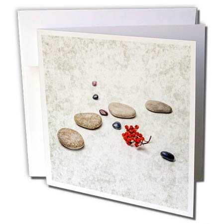 3dRose Alexis Photography - Objects Zen - Intersection of stones and pebbles, cluster of red rowan berries. Zen - 12 Greeting Cards with envelopes (gc_265666_2)