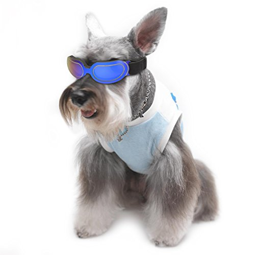 Abzon Cool Pet Sunglasses Dog Puppy Goggles Windproof UV Protection for Doggy/Cat, for Dogs and Pet Lover.(Blue) from Abzon