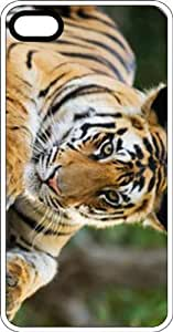 Sideways Tiger Clear Plastic Case for Apple iPhone 4 or iPhone 4s