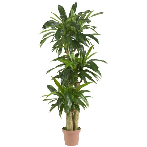 Nearly Natural 6584 Corn Stalk Dracaena Decorative Artificial Silk Plant, Green ()
