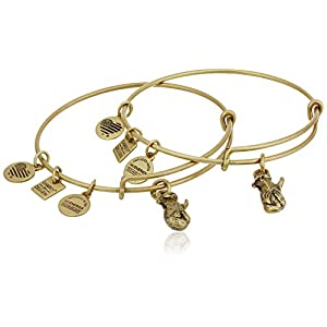 Alex and Ani Women's Charity by Design Side by Side Set of 2 Expandable Wire Bangles