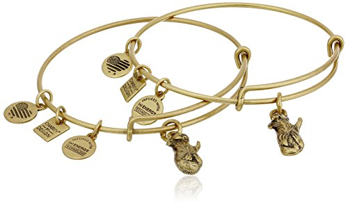 Alex and Ani Charity by Design Side by Side Set of 2 Expandable Rafaelian Gold Bangle Bracelet