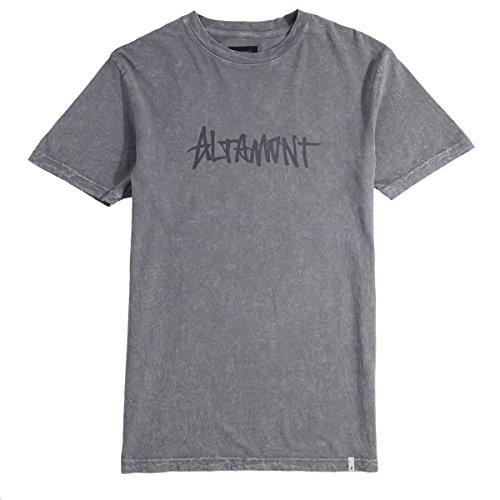 Altamont Tee (ALTAMONT One Liner Wash T-Shirt - Grey - MD)