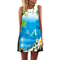Fvjikne Women Dress Sleeveless Casual Summer Sundress O Neck White Chiffon Dresses Multi L