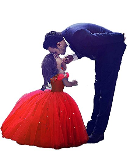AWEIDA Cinderella Flower Girls Dress Long Toddler Pageant Ball Gown Communion Dress AD004
