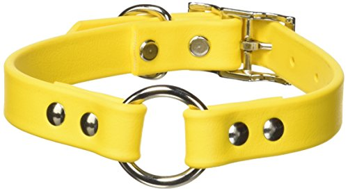 OmniPet Zeta Ring in Center with Dee Dog Collar, 3/4 x 18, Yellow