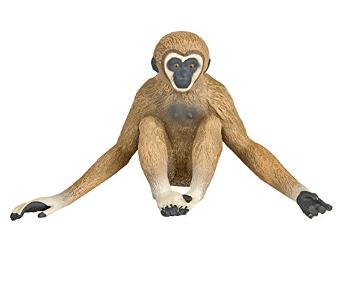 Safari Ltd. Gibbon - Realistic Hand Painted Toy Figurine Model - Quality Construction from Phthalate, Lead and BPA Free Materials - For Ages 3 and -