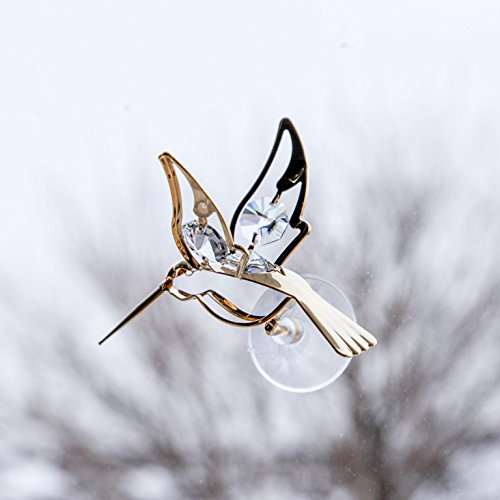 Hang Stained Glass Window (Trenton Gifts Window Hanging Crystal Hummingbird Suncatcher)