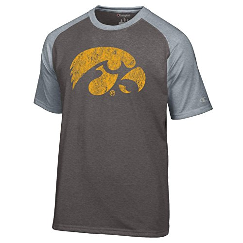 NCAA Iowa Hawkeyes Men's Champion Men's Mascot Short sleeve T-Shirt, Medium, Gray Champion Sports Apparel