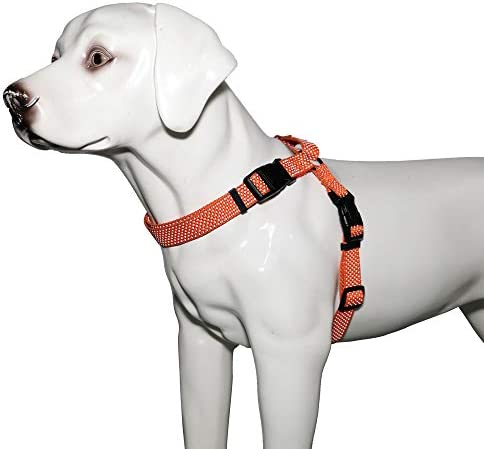 KOOWIN Slip Martingale Dog Collar & Dog Harness Dog LeashReflective Strip Orange/Grey
