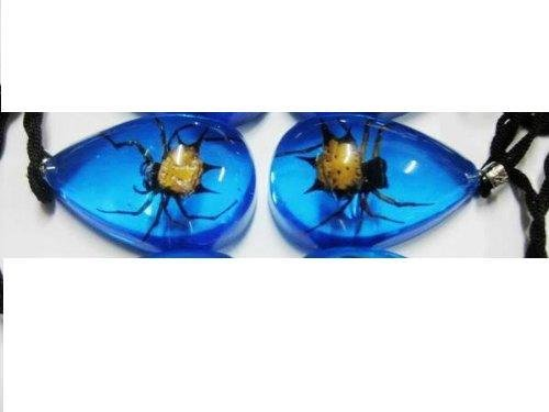 1 REAL YELLOW TUMMY BROWN DOUBLE PRONG SPIDER IN BLUE LUCITE GIFT Pendant .. from Hibiscus Express