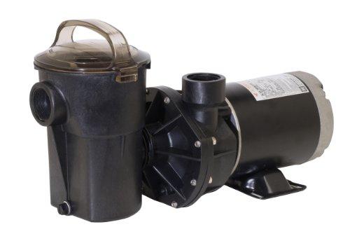 (Hayward SP1580X15TL PowerFlo LX 1.5 HP Above-Ground Swimming Pool Pump, Twist Lock Cord)