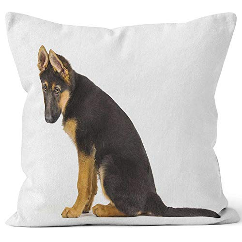 "Nine City Puppy German Shepherd Dog Looking sad Throw Pillow Cushion Cover,HD Printing Decorative Square Accent Pillow Case,24"" W by 24"" L"