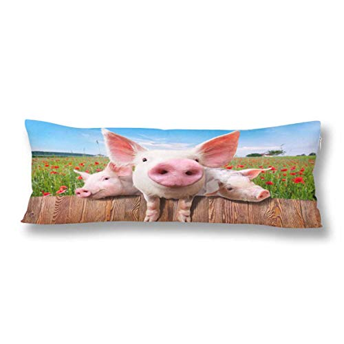 InterestPrint Young Pink Pigs Piglet on The Farm Red Flower Body Pillow Covers Case Protector Rectangle with Zipper 21x60 Twin Sides for Sofa Decorative ()