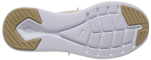 Scarpe Puma 10 Ignite Sportive whisper Beige Evoknit White Uomo Outdoor pebble Flash puma White FqZtqxw6