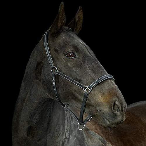 Gallop Cabestro para caballo ajustable, piel