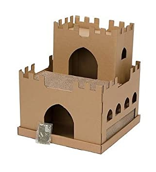 Amazon.com: Planet Petco castillo rascador para gatos ...